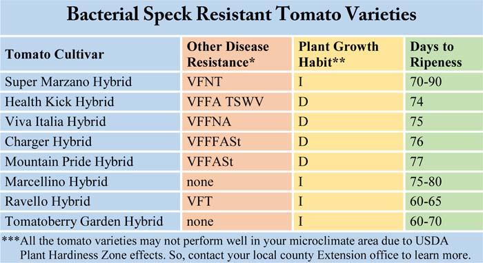 Bacterial Speck Resistant Tomato Varieties