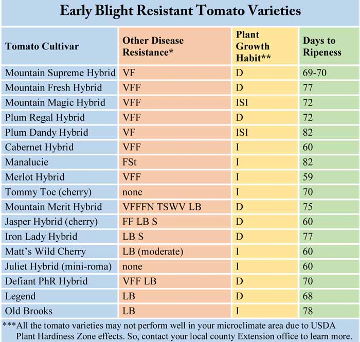 Early Blight Resistant Tomato Varieties