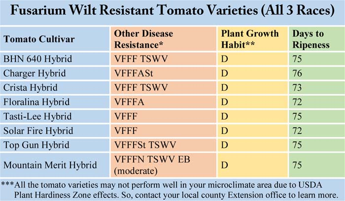 Fusarium Wilt Resistant Tomato Varieties (All 3 Races)