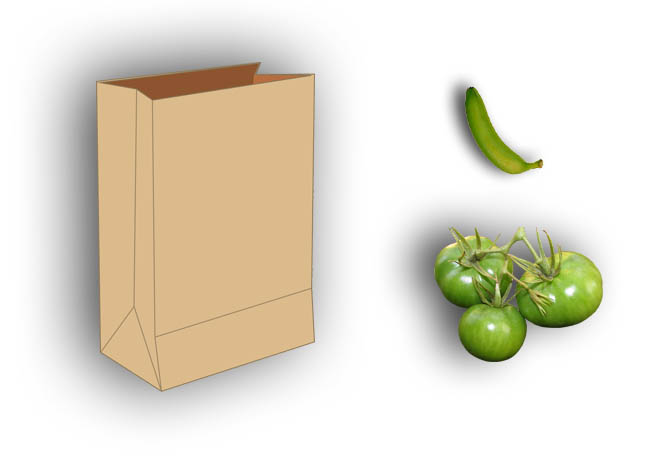 Ripening Green Tomatoes with a brown paper bag